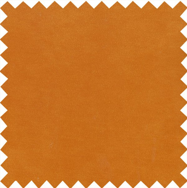 Stain Resistant Velvet Burnt Orange