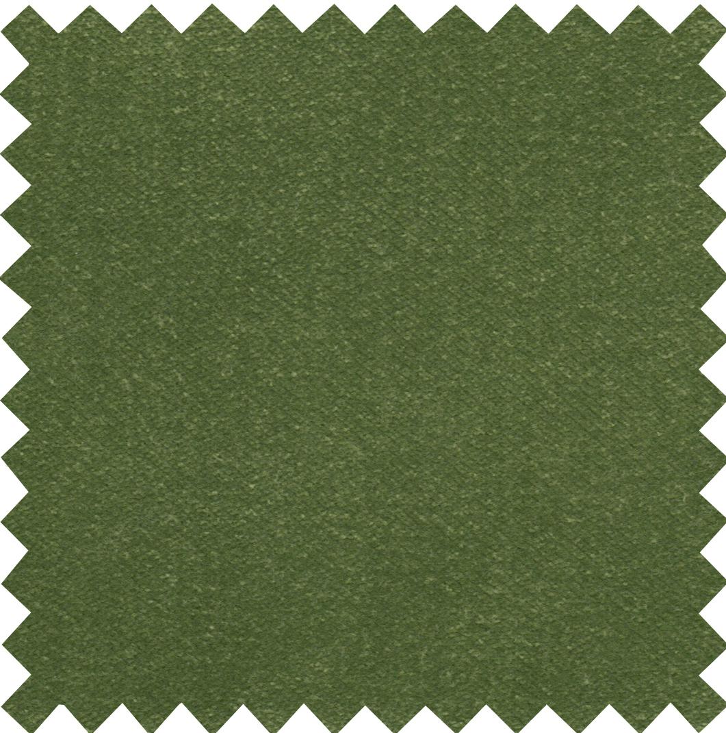 Stain Resistant Velvet Grass